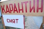 Губернатор отменил карантин по бешенству в Каменске-Уральском