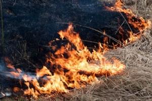Возле лагеря «Три пещеры» под Каменском-Уральским тушат лесной пожар. Опасности для отдыхающих нет