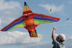 В субботу под Каменском-Уральским пройдет фестиваль воздушных змеев