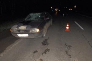 Под Каменском-Уральским иномарка сбила пешехода