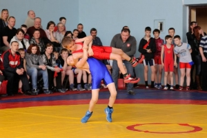 Шесть медалей завоевали мастера греко-римской борьбы из Каменска-Уральского на всероссийском турнире в Кургане