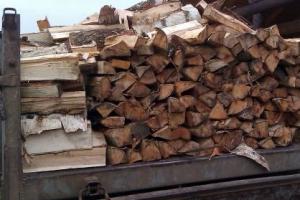 В Каменской епархии вновь пройдет акция «Подари дрова». Сейчас составляются списки нуждающихся