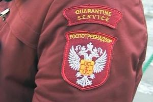 Предприятие, снабжающее горячей водой КУЗОЦМ и поселок Первомайский в Каменске, оштрафовали на 50 тысяч рублей