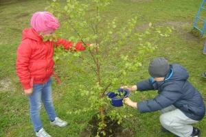4 мая в Каменске-Уральском стартует РУСАЛовский экологический марафон «Зеленая волна». Начнут с высадки деревьев