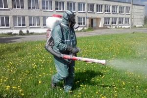 В Каменске-Уральском завершился первый этап обработки дворов от клещей