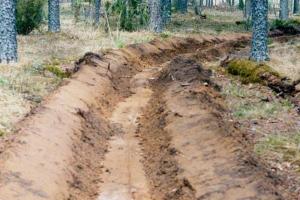 В Каменске-Уральской пытаются обезопасить от пожаров лесные массивы, расположенные в черте города и на окраинах