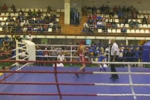 Боксеры из Каменска-Уральского привезли золотую и серебряную медали с чемпионата России