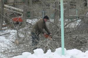 За год во дворах Каменска-Уральского удалили почти 700 деревьев и вывезли 3,2 кубометров снега