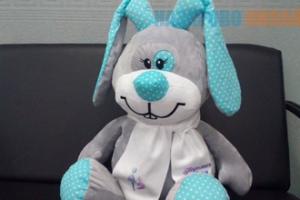 Плюшевые игрушки из Каменска-Уральского станут героями благотворительной акции в Красноярском крае