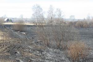 Еще двух жителей Каменска-Уральского привлекли к ответственности за нарушение правил пожарной безопасности