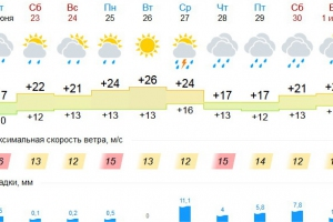 Летнее тепло должно вернуться в Каменск-Уральский к вечеру и задержится до четверга