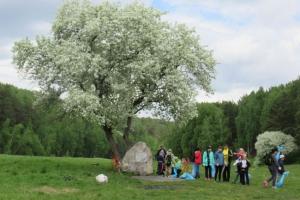 Жителей города 27 мая приглашают на Каменскую прогулку