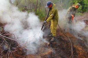 Город спасли от удушливого дыма. Под Каменском-Уральским оперативно успели потушить торфяное поле