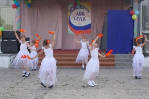 Учреждения культуры Каменского района готовятся к открытию нового творческого сезона