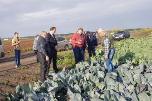 Очередное заседание совета директоров Каменска-Уральского провели… в полях