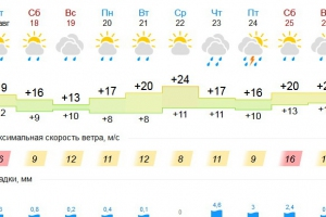 Дожди обещают Каменску-Уральскому почти каждый день. Но 1 сентября будет солнечно и очень тепло
