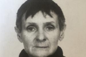 В Каменске-Уральском уже почти три месяца ищут 54-летнюю Светлану Смольянову