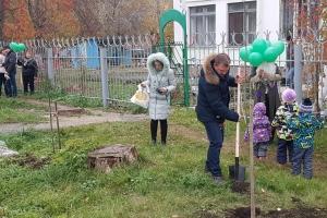 20 саженцев рябинок обрели новое место жительства на Театральной аллее в Синарском районе Каменска-Уральского