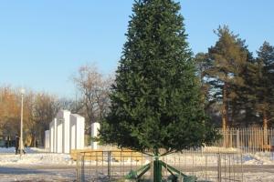 Городской парк Каменска-Уральского обзавелся своей новогодней елкой