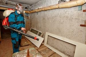 В Каменске-Уральском коммунальщики продолжают борьбу с грызунами и дурным запахом в подвалах многоквартирных домов