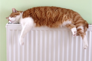 Жители Каменска-Уральского перестали жаловаться на некомфортную температуру в своих квартирах